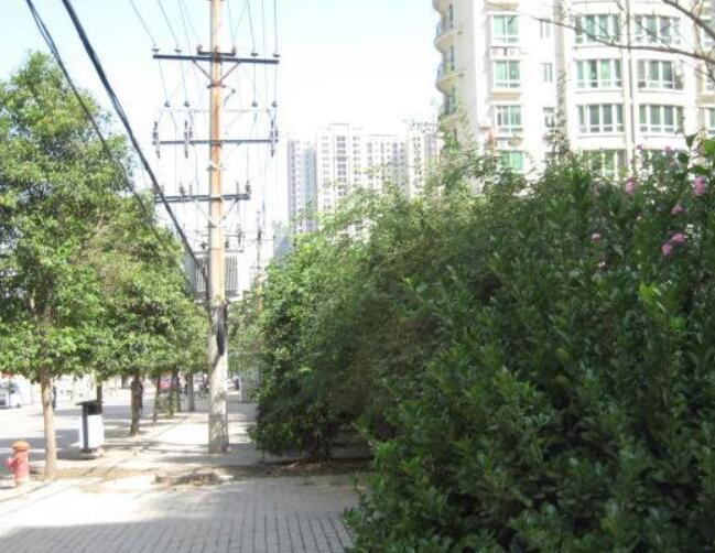 中房文博花园